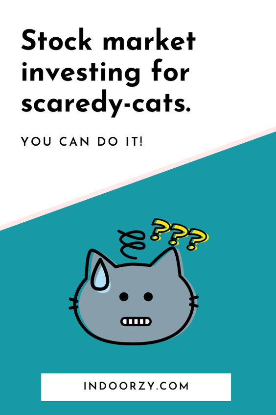 Stock Market Investing for Scaredy-Cats