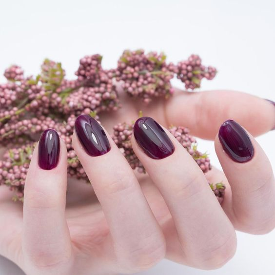 Fall Nails Ideas | Short Round Deep Purple Fall Nails