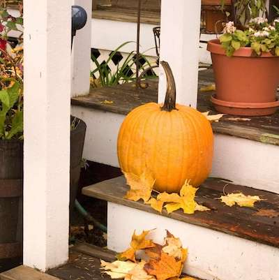 Best Fall Porch Decorations! Classy Fall Decor for the Porch