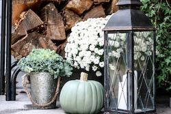 Best Fall Porch Decorations,Fall Decorating Ideas for the Porch,Fall Decor for the Porch,Autumn Front Porch Decorating Ideas,Small Porch Fall Decor Ideas,Ideas for Fall Door Decorations,Dollar Tree Fall Porch Decor,Classy Fall Porch Decor