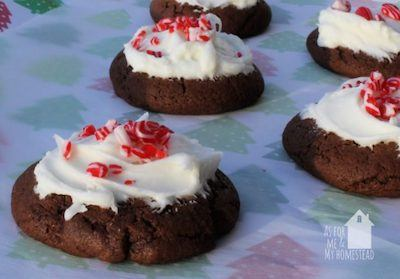 Chocolate Candy Cane Christmas Cookies with Peppermint Frosting
